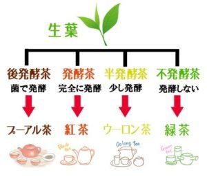 日本茶ブログ 緑茶紅茶ウーロン茶